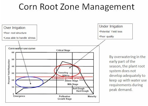 Corn Water Use Curve